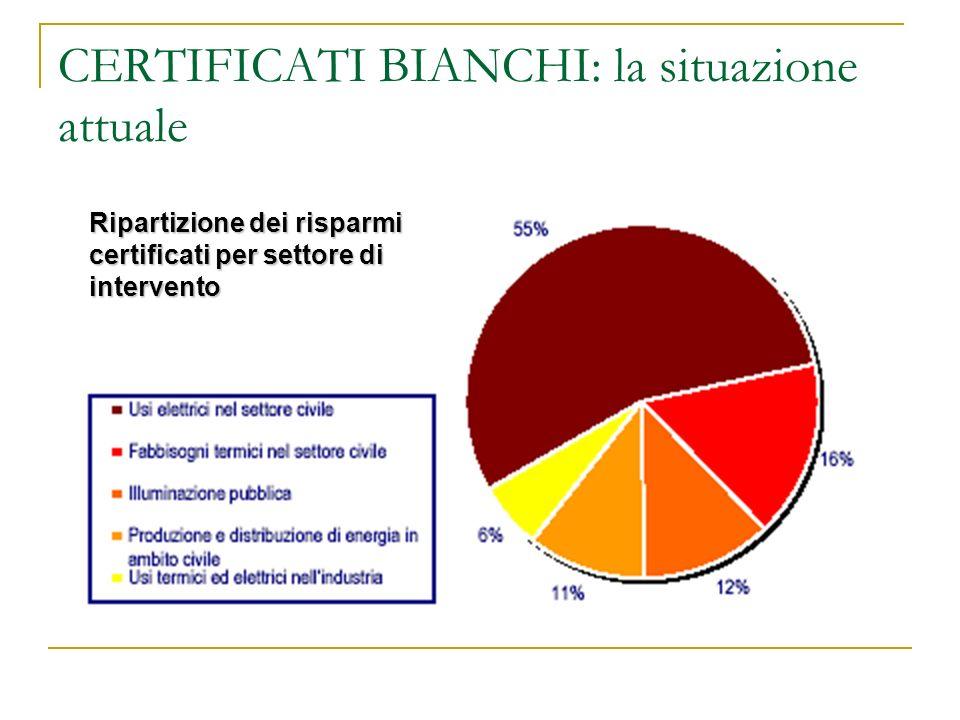 CERTIFICATI BIANCHI: la situazione attuale Analizzando i progetti realizzati è possibile individuare 5 ambiti di intervento: 1.Usi elettrici nel setto