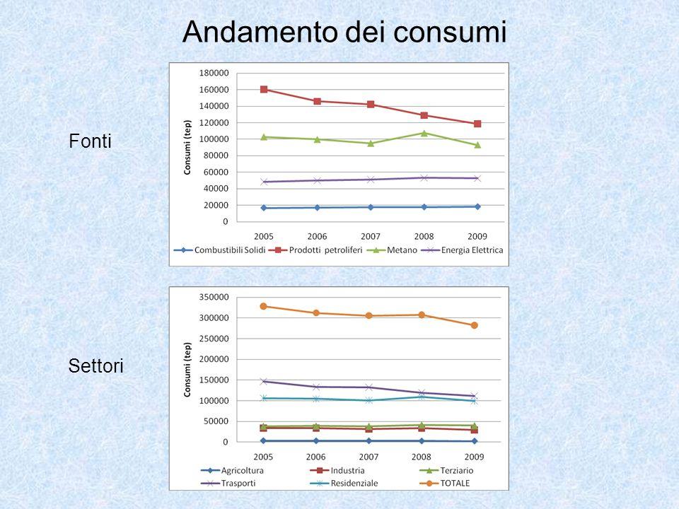 Andamento dei consumi Fonti Settori
