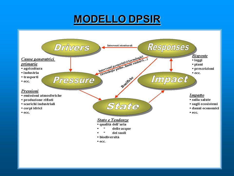 MODELLO DPSIR