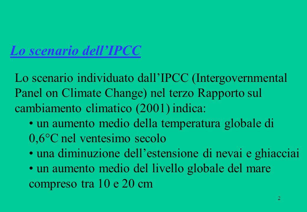 2 Lo scenario individuato dallIPCC (Intergovernmental Panel on Climate Change) nel terzo Rapporto sul cambiamento climatico (2001) indica: un aumento medio della temperatura globale di 0,6°C nel ventesimo secolo una diminuzione dellestensione di nevai e ghiacciai un aumento medio del livello globale del mare compreso tra 10 e 20 cm Lo scenario dellIPCC