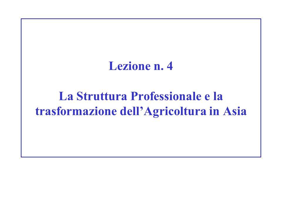 Lezione n. 4 La Struttura Professionale e la trasformazione dellAgricoltura in Asia