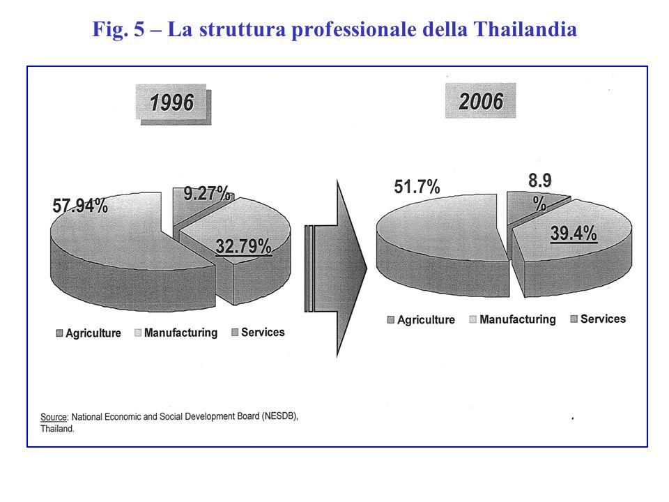 Fig. 5 – La struttura professionale della Thailandia