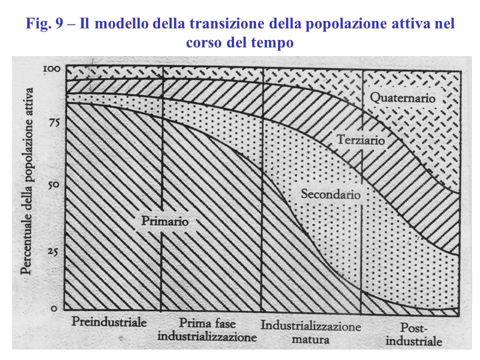 Fig. 9 – Il modello della transizione della popolazione attiva nel corso del tempo