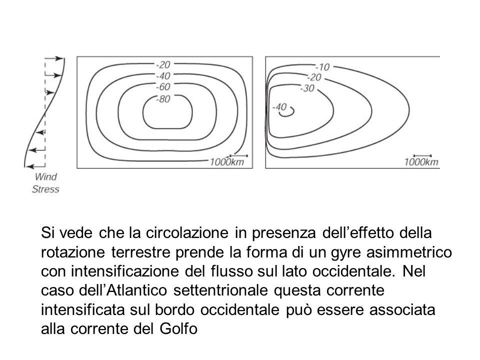 Si vede che la circolazione in presenza delleffetto della rotazione terrestre prende la forma di un gyre asimmetrico con intensificazione del flusso s