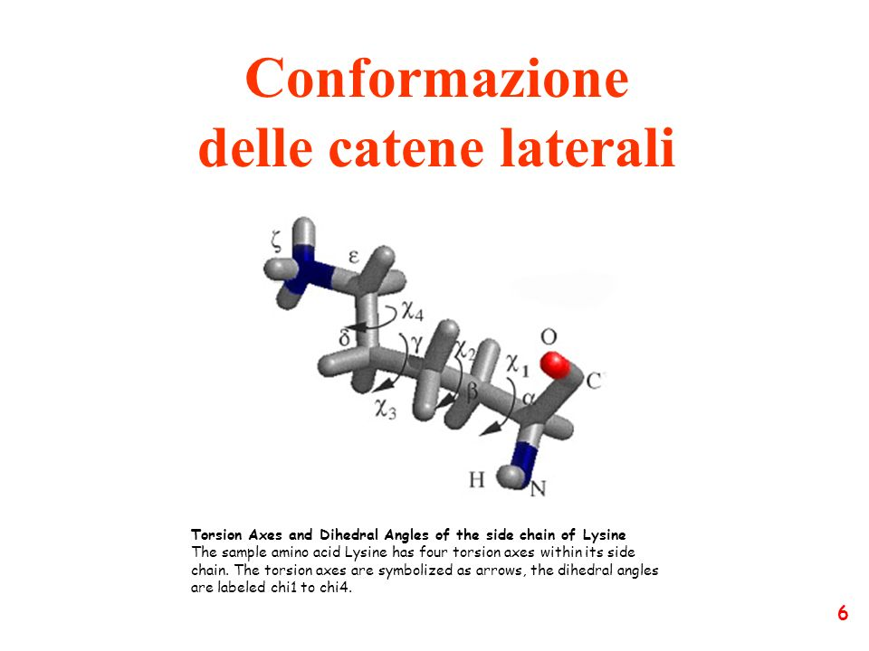 Conformazione delle catene laterali Torsion Axes and Dihedral Angles of the side chain of Lysine The sample amino acid Lysine has four torsion axes wi