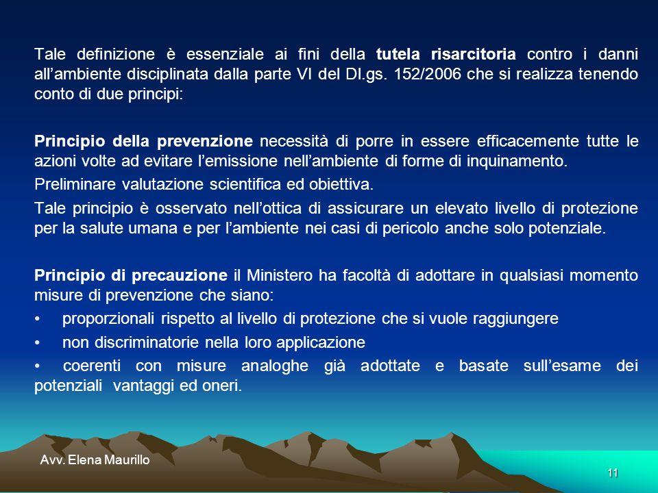 11 Avv. Elena Maurillo Tale definizione è essenziale ai fini della tutela risarcitoria contro i danni allambiente disciplinata dalla parte VI del Dl.g
