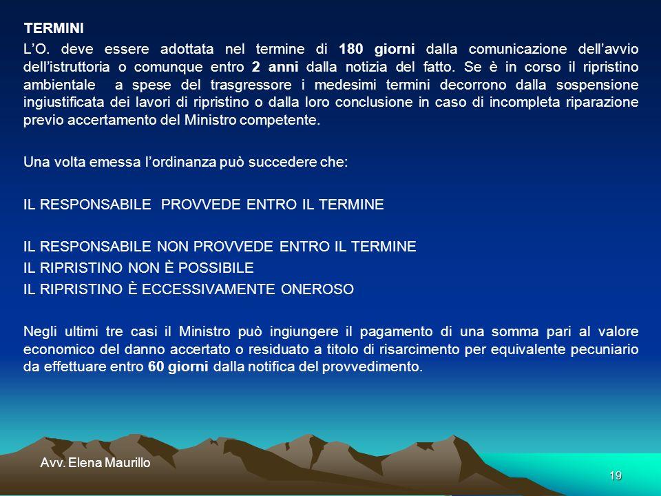 19 Avv. Elena Maurillo TERMINI LO. deve essere adottata nel termine di 180 giorni dalla comunicazione dellavvio dellistruttoria o comunque entro 2 ann