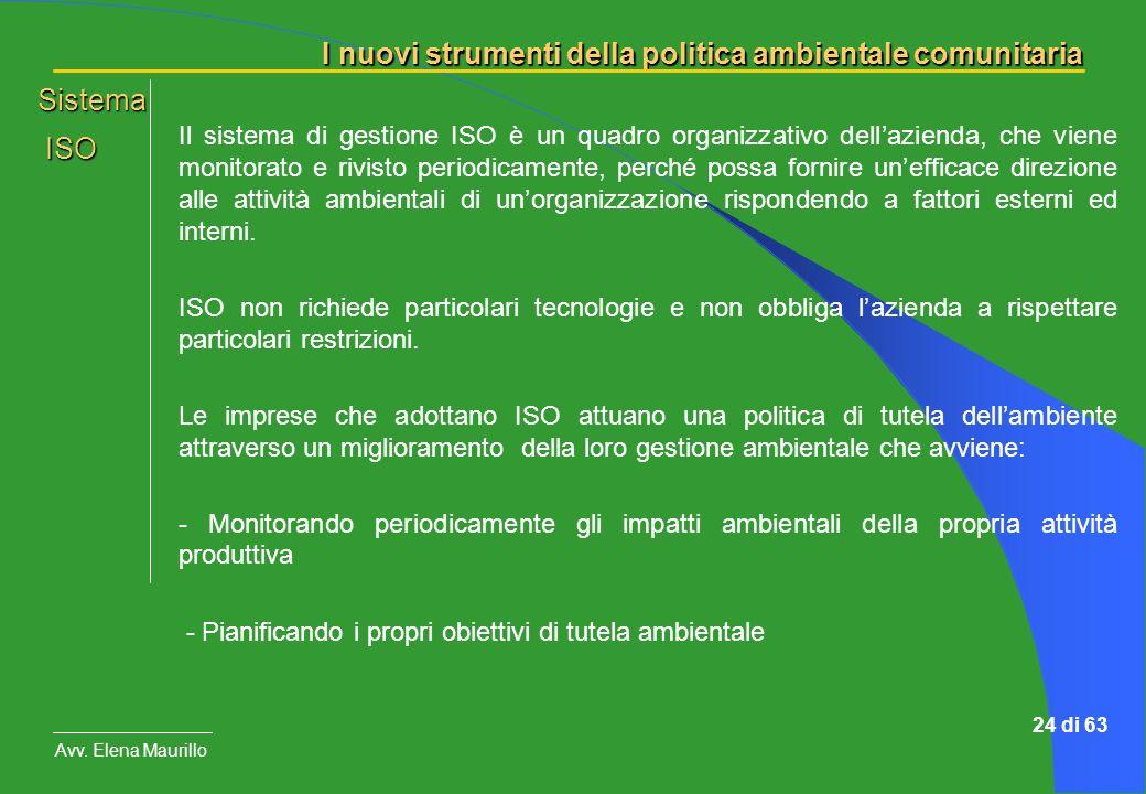 I nuovi strumenti della politica ambientale comunitaria Avv. Elena Maurillo 24 di 63 Il sistema di gestione ISO è un quadro organizzativo dellazienda,