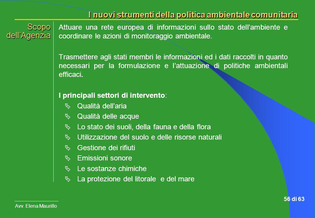I nuovi strumenti della politica ambientale comunitaria Avv. Elena Maurillo 56 di 63 Attuare una rete europea di informazioni sullo stato dellambiente