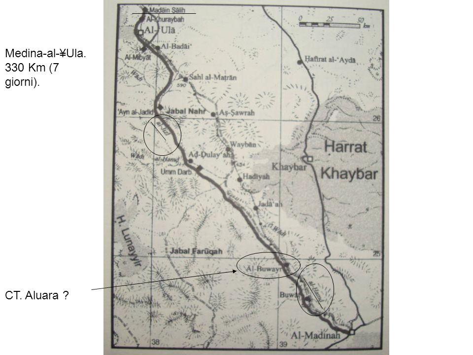 Medina-al-¥Ula. 330 Km (7 giorni). CT. Aluara ?