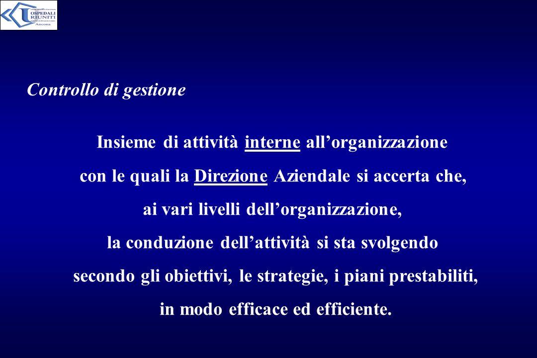 Controllo di gestione Insieme di attività interne allorganizzazione con le quali la Direzione Aziendale si accerta che, ai vari livelli dellorganizzaz