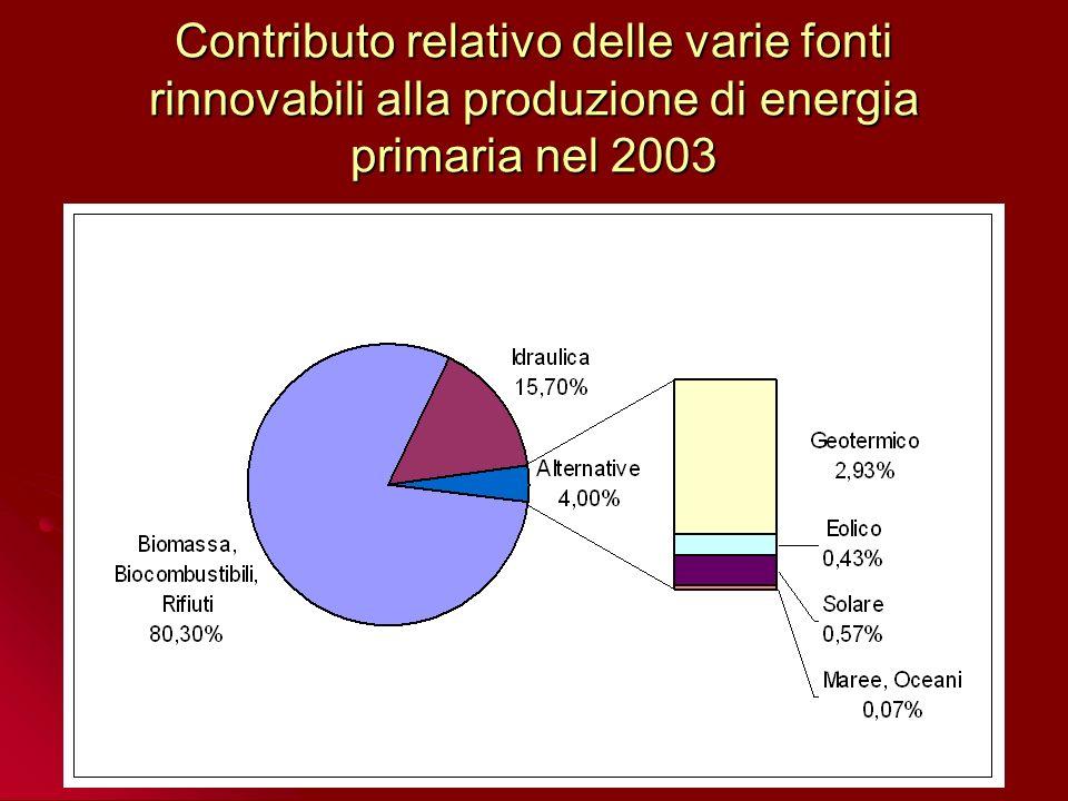 Consumi globali denergia da fonti rinnovabili per settori nel 2000 Produzione di energia elettrica dalle varie fonti nel 2000 Produzione di energia elettrica da fonti rinnovabili nel 2003