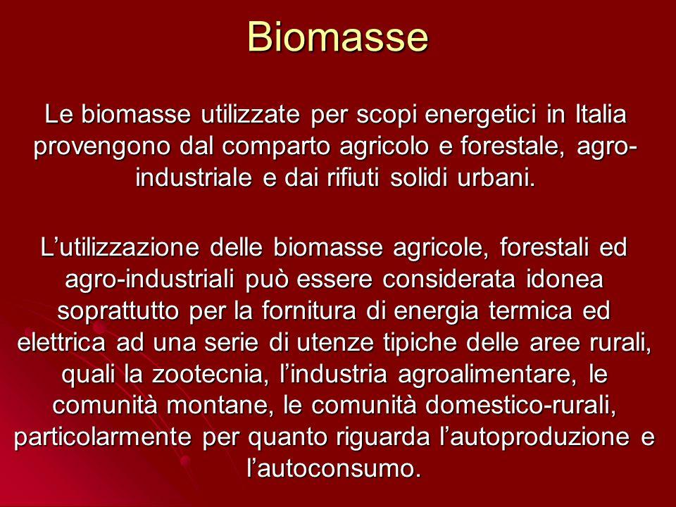 RSU Gestione dei RSU in Italia nellanno 2004 * * APAT-ONR Rapporto rifiuti 2001 I rifiuti solidi urbani, invece, interessano soprattutto le aziende municipalizzate che esplicano anche un servizio di fornitura di energia elettrica o di teleriscaldamento.