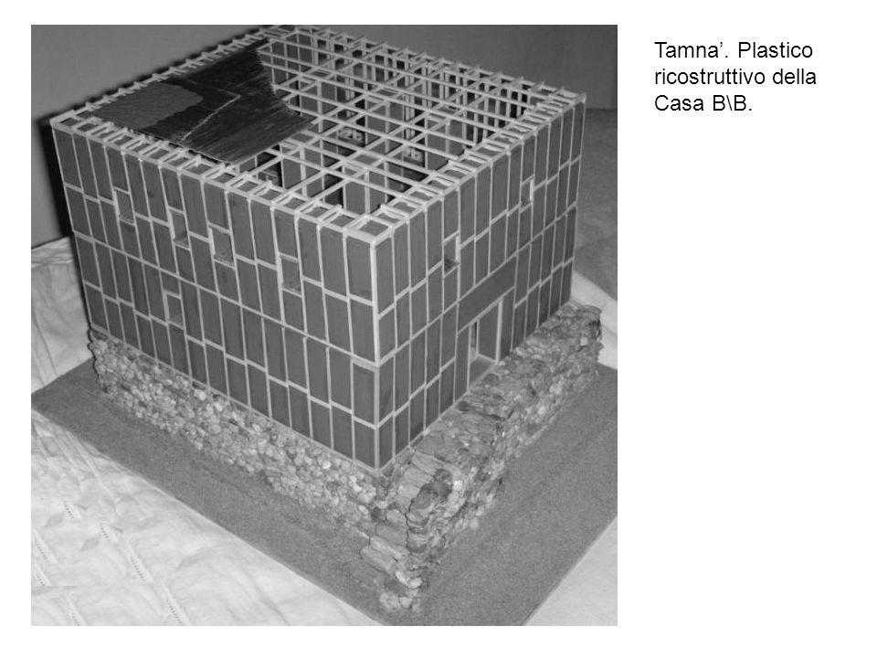 Tamna. Plastico ricostruttivo della Casa B\B.