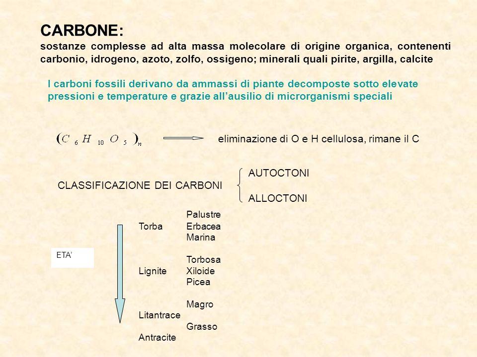 CARBONE: sostanze complesse ad alta massa molecolare di origine organica, contenenti carbonio, idrogeno, azoto, zolfo, ossigeno; minerali quali pirite, argilla, calcite I carboni fossili derivano da ammassi di piante decomposte sotto elevate pressioni e temperature e grazie allausilio di microrganismi speciali eliminazione di O e H cellulosa, rimane il C AUTOCTONI CLASSIFICAZIONE DEI CARBONI ALLOCTONI ETA Palustre TorbaErbacea Marina Torbosa LigniteXiloide Picea Magro Litantrace Grasso Antracite