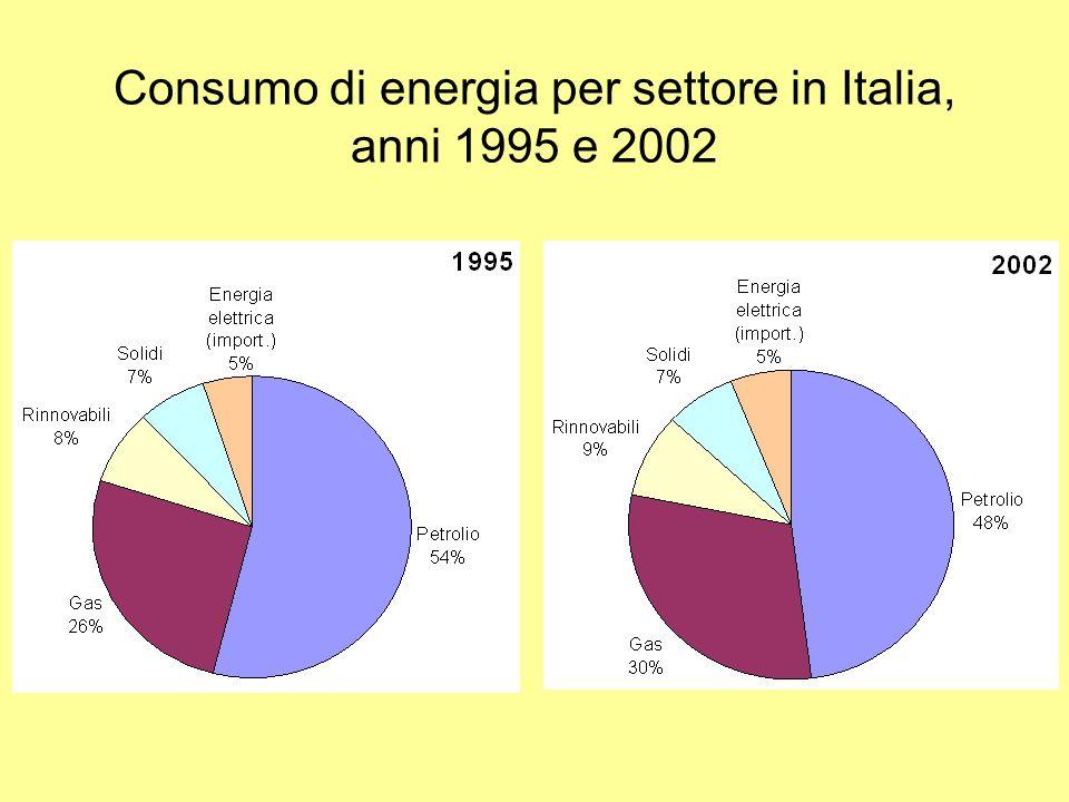 Consumo di energia per settore in Italia, anni 1995 e 2002