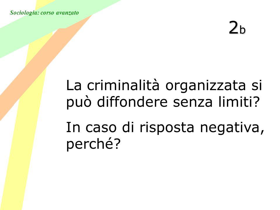 Sociologia: corso avanzato 2b2b2b2b La criminalità organizzata si può diffondere senza limiti.