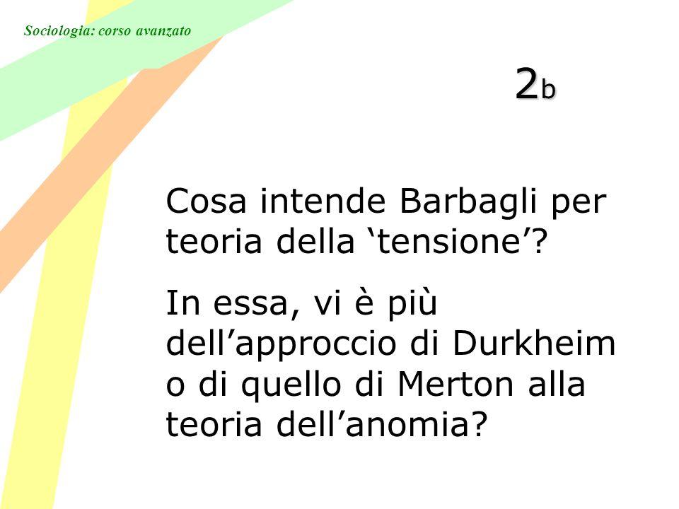 Sociologia: corso avanzato 2b2b2b2b Cosa intende Barbagli per teoria della tensione.