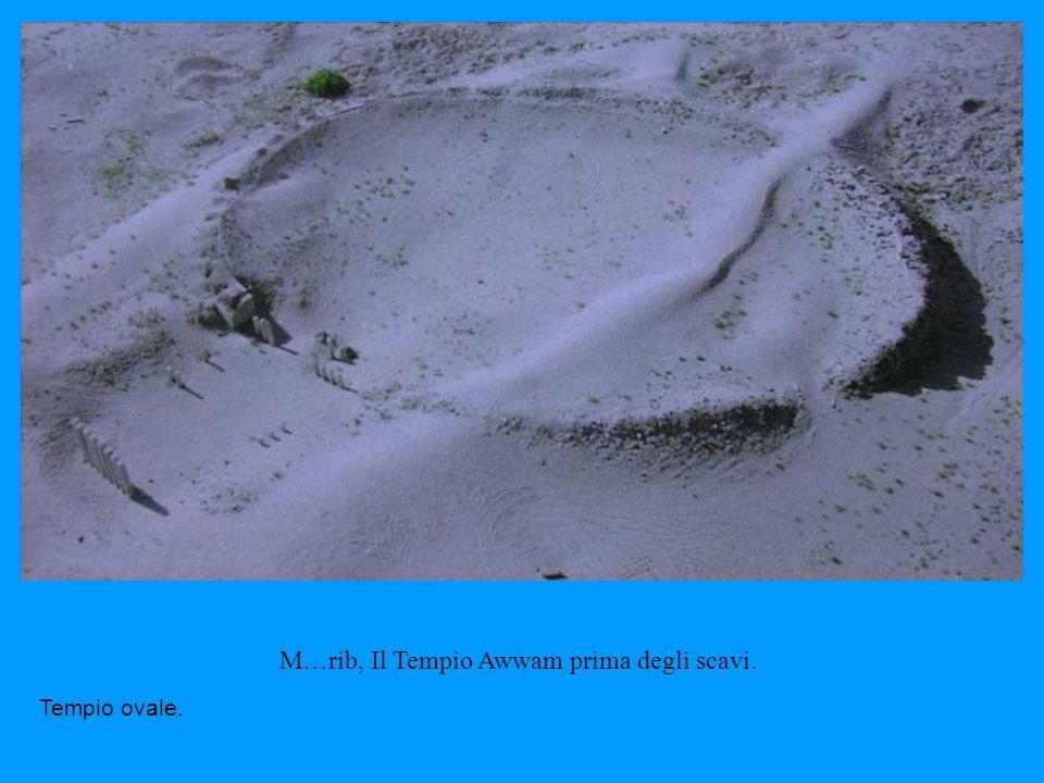 M … rib, Il Tempio Awwam prima degli scavi. Tempio ovale.