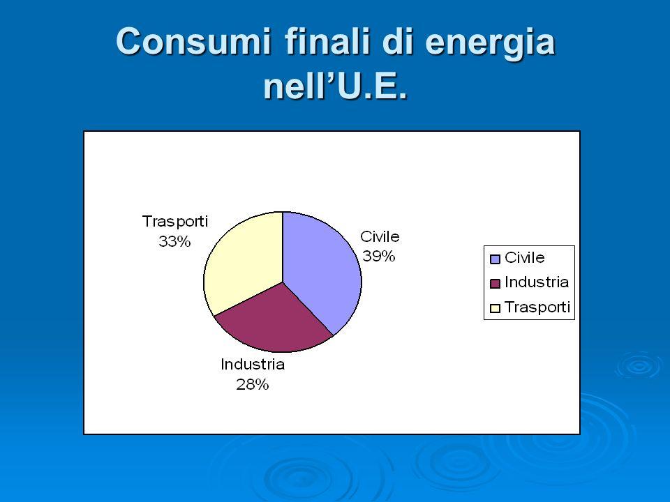 Consumi finali di energia nellU.E.