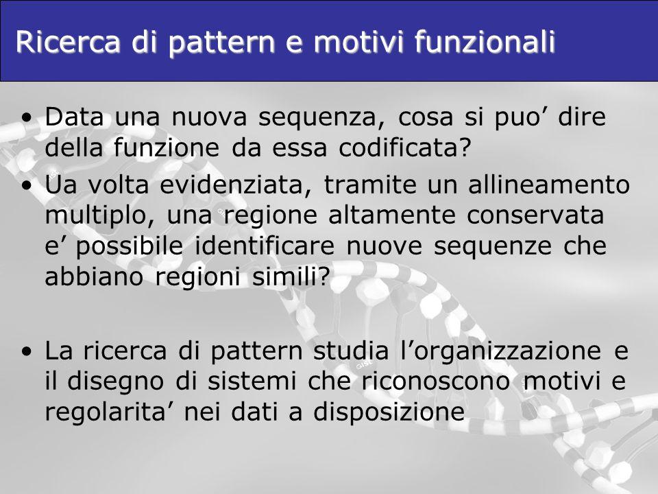 Ricerca di pattern e motivi funzionali Data una nuova sequenza, cosa si puo dire della funzione da essa codificata? Ua volta evidenziata, tramite un a
