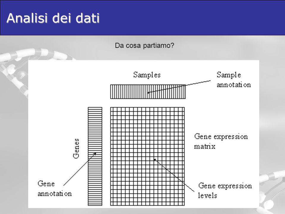 Analisi dei dati Da cosa partiamo?