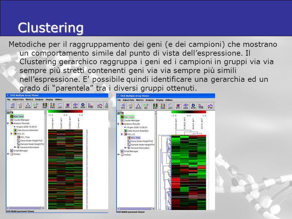 Clustering Metodiche per il raggruppamento dei geni (e dei campioni) che mostrano un comportamento simile dal punto di vista dellespressione. Il Clust