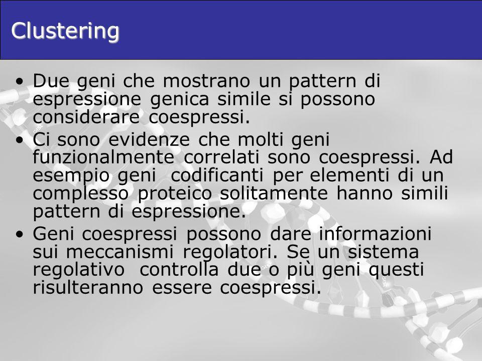 Clustering Due geni che mostrano un pattern di espressione genica simile si possono considerare coespressi. Ci sono evidenze che molti geni funzionalm