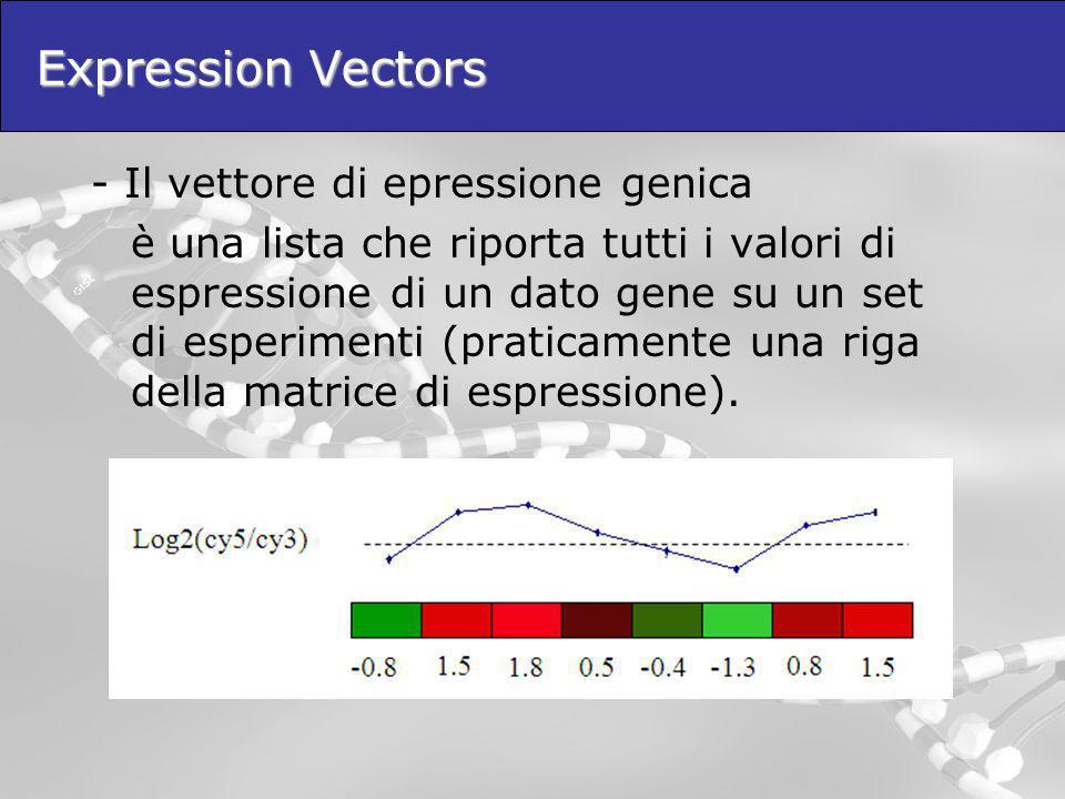 Expression Vectors - Il vettore di epressione genica è una lista che riporta tutti i valori di espressione di un dato gene su un set di esperimenti (p