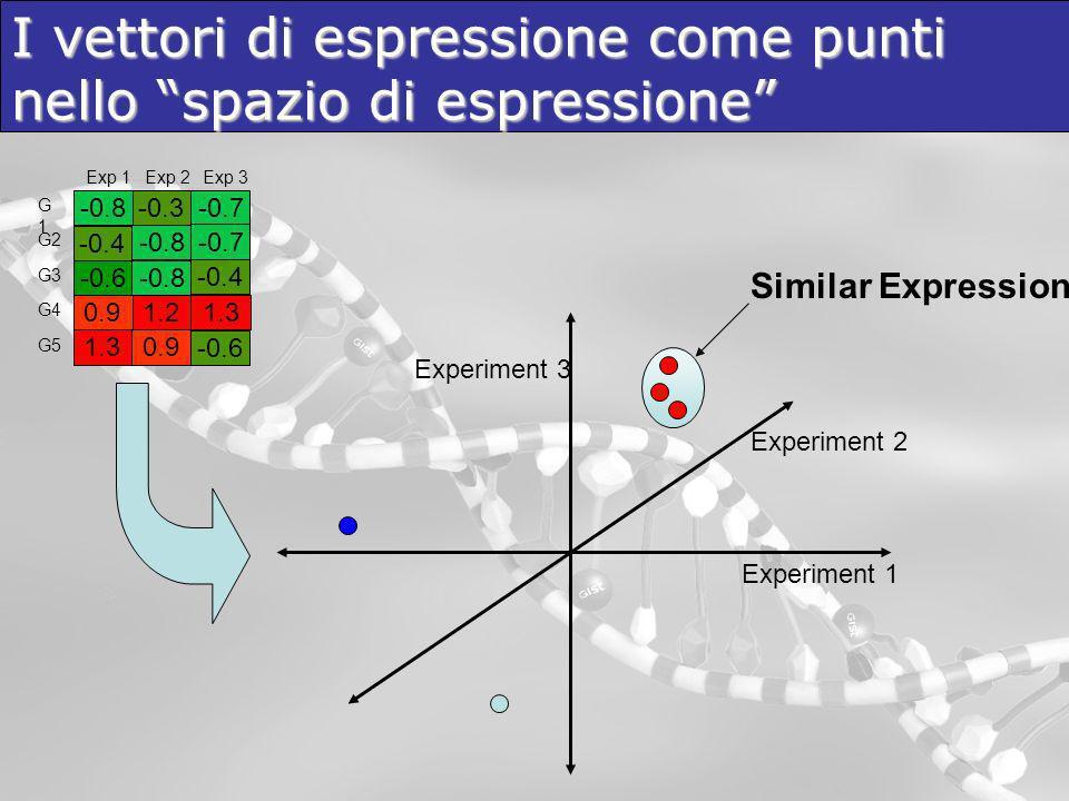 I vettori di espressione come punti nello spazio di espressione Experiment 1 Experiment 2 Experiment 3 Similar Expression -0.8 -0.6 0.91.2 -0.3 1.3 -0