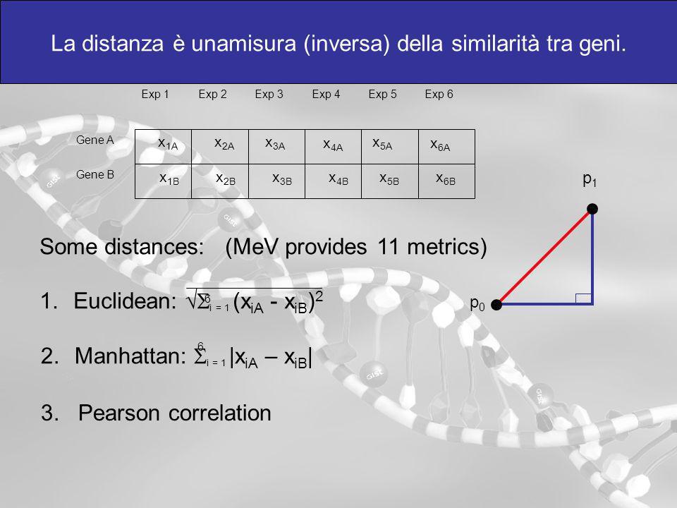 La distanza è unamisura (inversa) della similarità tra geni. Exp 1Exp 2Exp 3Exp 4Exp 5Exp 6 Gene A Gene B x 1A x 2A x 3A x 4A x 5A x 6A x 1B x 2B x 3B