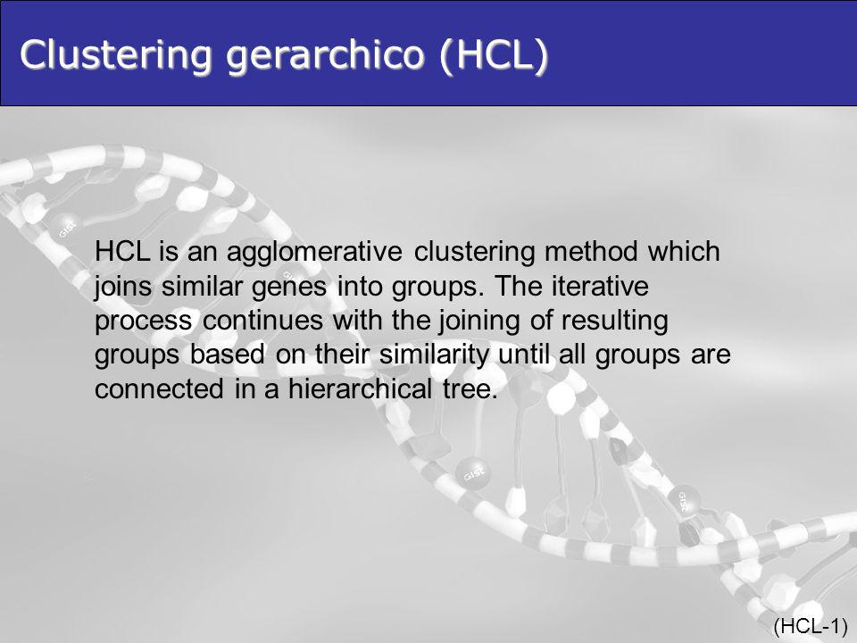 Clustering gerarchico (HCL) HCL is an agglomerative clustering method which joins similar genes into groups.