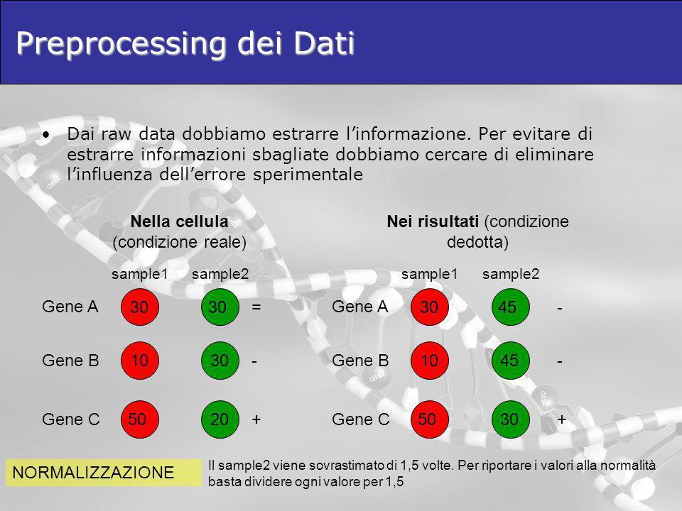 Preprocessing dei Dati Dai raw data dobbiamo estrarre linformazione. Per evitare di estrarre informazioni sbagliate dobbiamo cercare di eliminare linf