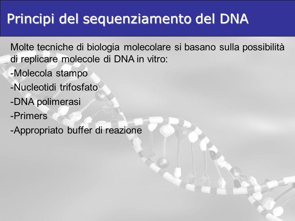 Principi del sequenziamento del DNA Molte tecniche di biologia molecolare si basano sulla possibilità di replicare molecole di DNA in vitro: -Molecola stampo -Nucleotidi trifosfato -DNA polimerasi -Primers -Appropriato buffer di reazione