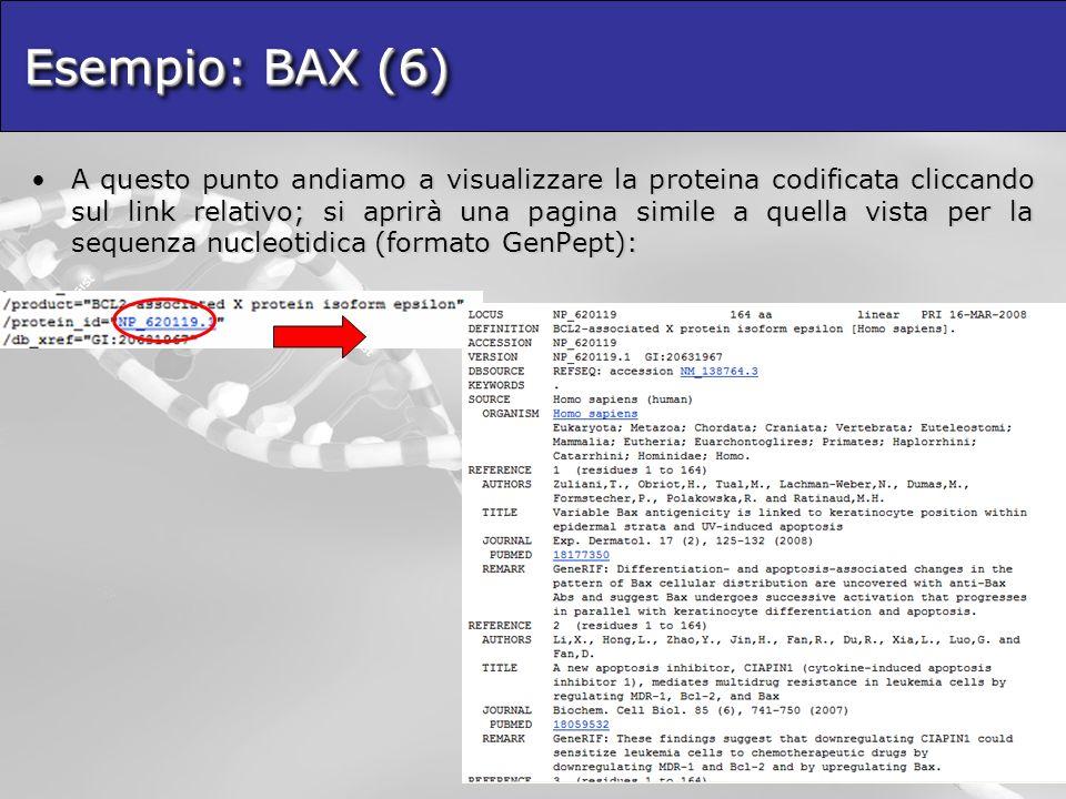 Esempio: BAX (6) A questo punto andiamo a visualizzare la proteina codificata cliccando sul link relativo; si aprirà una pagina simile a quella vista per la sequenza nucleotidica (formato GenPept):A questo punto andiamo a visualizzare la proteina codificata cliccando sul link relativo; si aprirà una pagina simile a quella vista per la sequenza nucleotidica (formato GenPept):