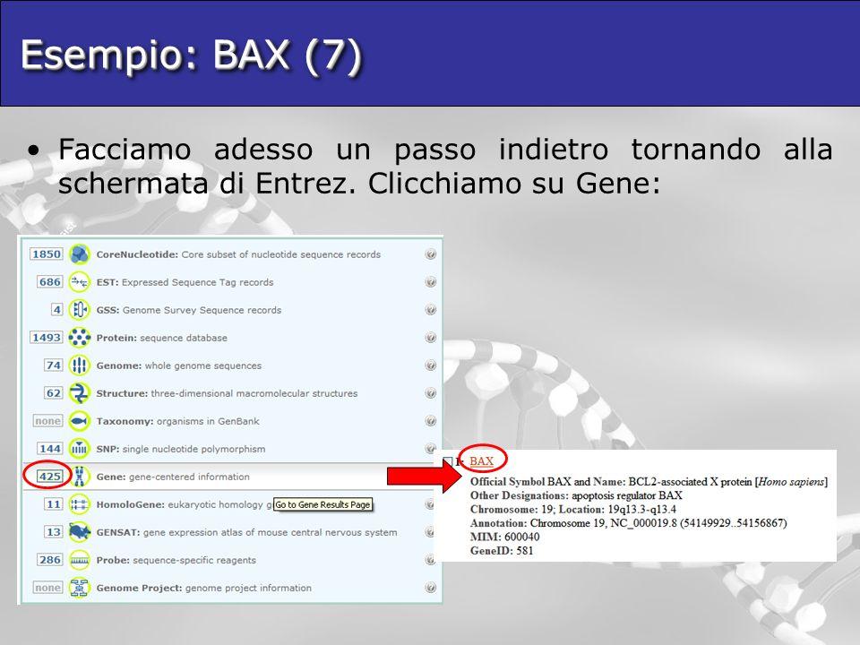Esempio: BAX (7) Facciamo adesso un passo indietro tornando alla schermata di Entrez.