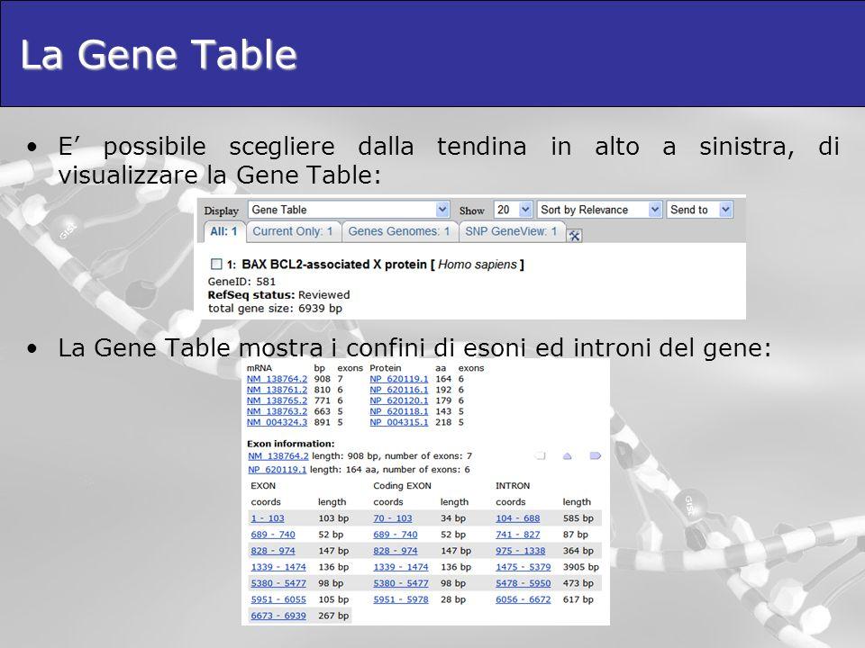 La Gene Table E possibile scegliere dalla tendina in alto a sinistra, di visualizzare la Gene Table: La Gene Table mostra i confini di esoni ed introni del gene: