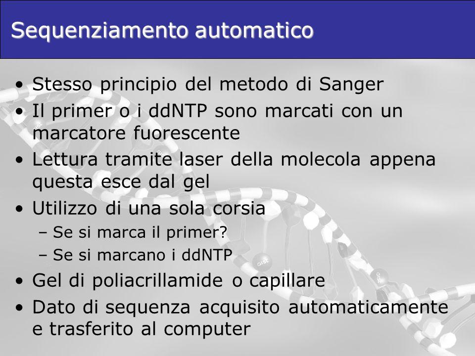 Sequenziamento automatico Stesso principio del metodo di Sanger Il primer o i ddNTP sono marcati con un marcatore fuorescente Lettura tramite laser della molecola appena questa esce dal gel Utilizzo di una sola corsia –Se si marca il primer.