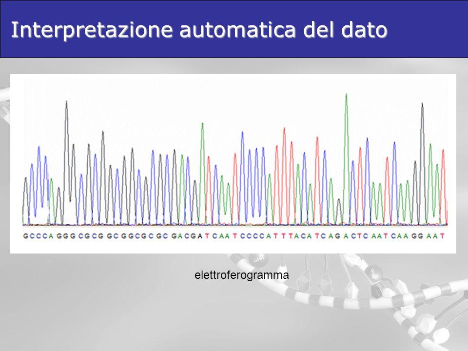 Interpretazione automatica del dato elettroferogramma