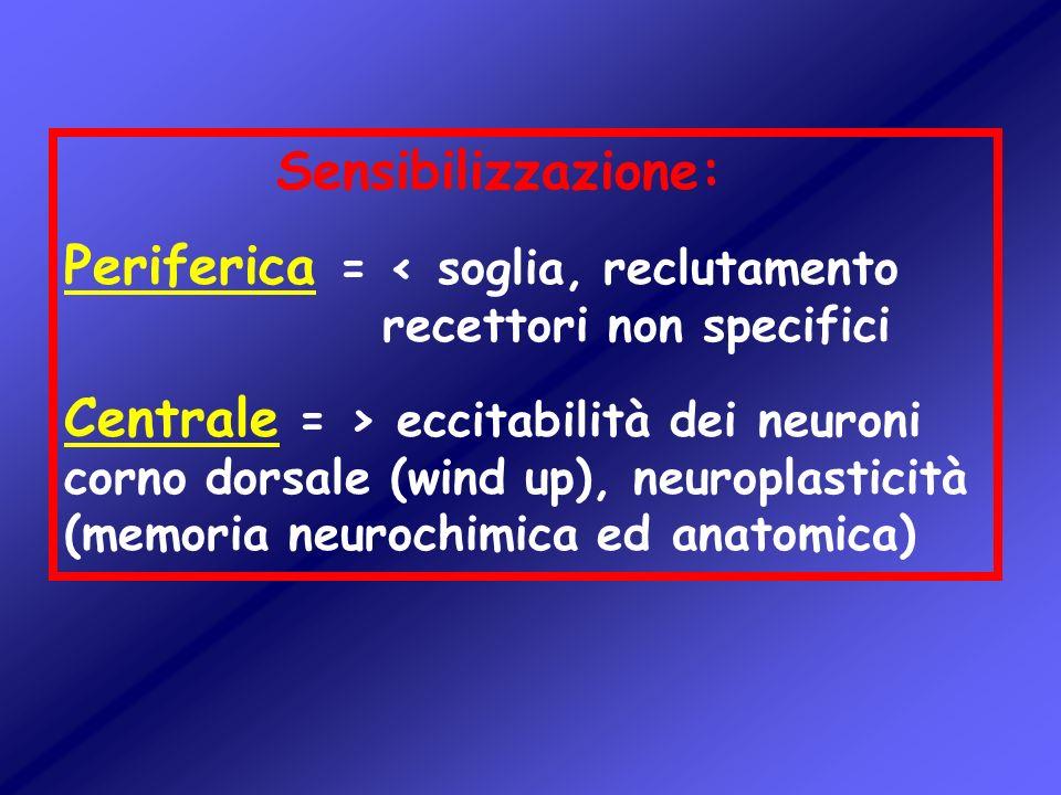 Sensibilizzazione: Periferica = < soglia, reclutamento recettori non specifici Centrale = > eccitabilità dei neuroni corno dorsale (wind up), neuropla