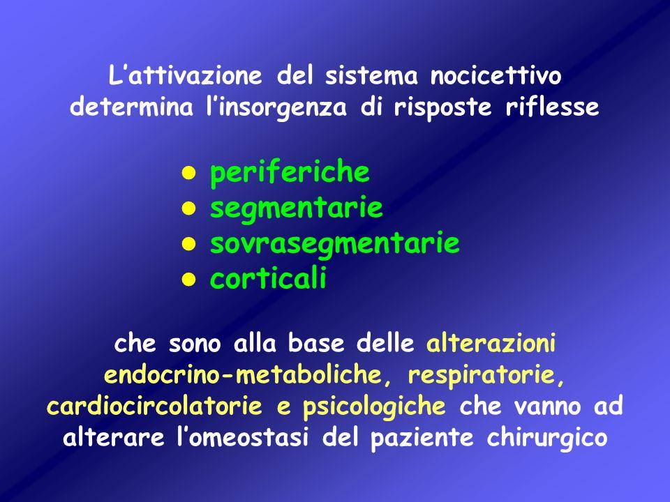 Lattivazione del sistema nocicettivo determina linsorgenza di risposte riflesse l periferiche l segmentarie l sovrasegmentarie l corticali che sono al