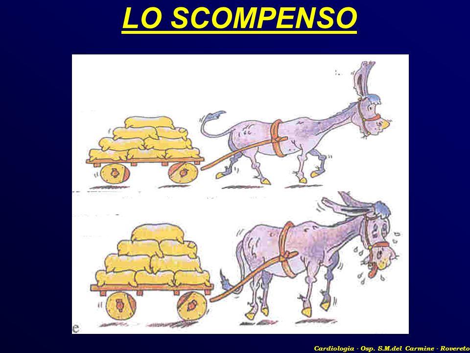 LO SCOMPENSO Cardiologia - Osp. S.M.del Carmine - Rovereto