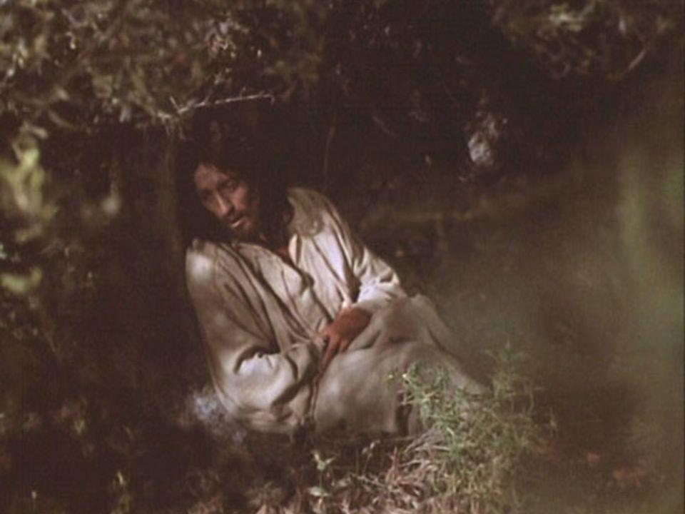 VII - Gesù muore in croce Ti adoriamo, o Cristo, e ti benediciamo Perché con la tua Croce hai redento il mondo