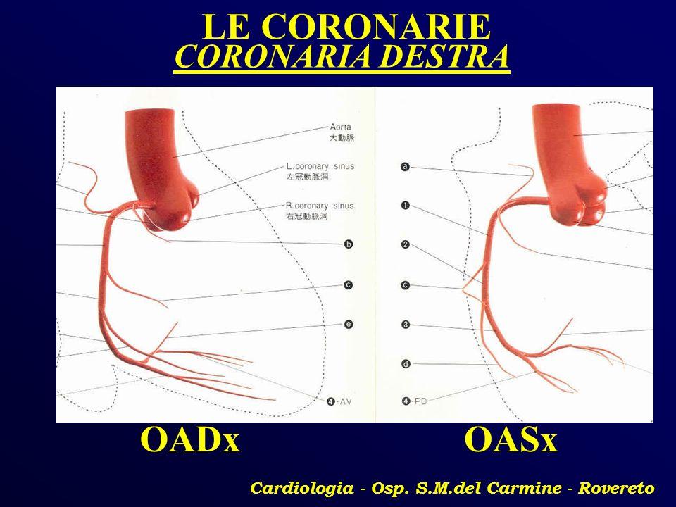 Cardiologia - Osp. S.M.del Carmine - Rovereto LE CORONARIE OADxOASx CORONARIA DESTRA