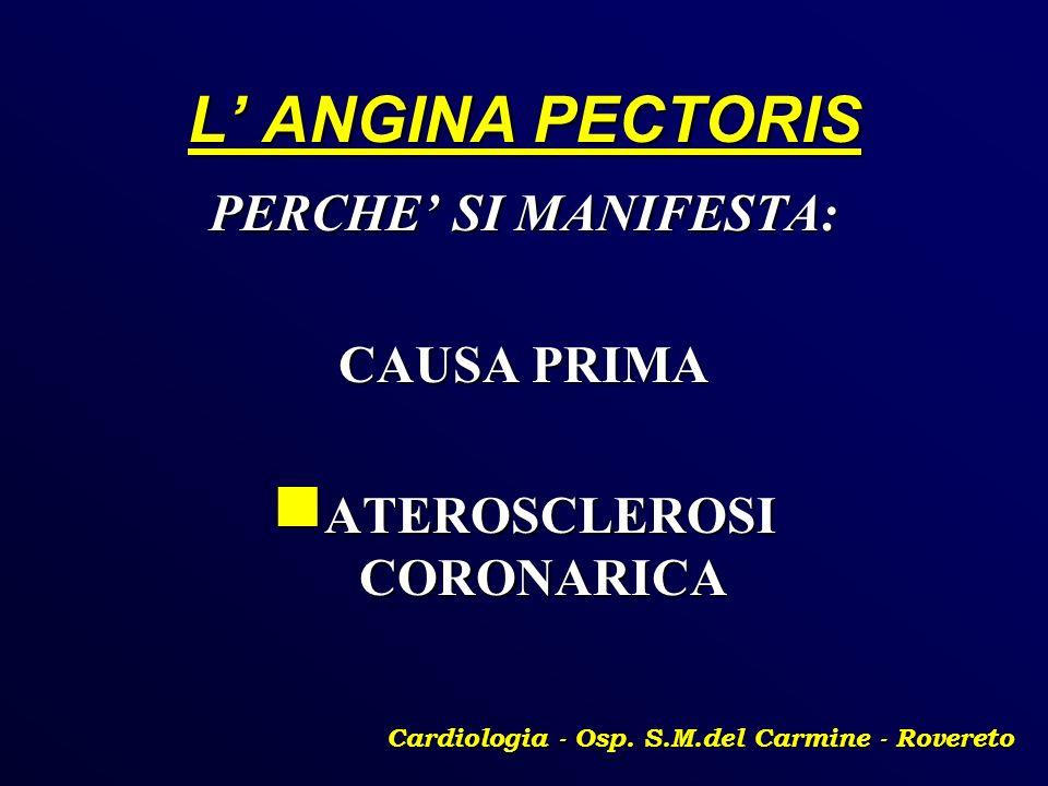 L ANGINA PECTORIS PERCHE SI MANIFESTA: CAUSA PRIMA ATEROSCLEROSI CORONARICA ATEROSCLEROSI CORONARICA Cardiologia - Osp. S.M.del Carmine - Rovereto