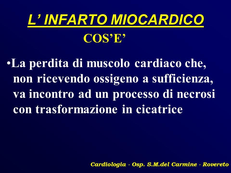 L INFARTO MIOCARDICO Cardiologia - Osp. S.M.del Carmine - Rovereto COSE La perdita di muscolo cardiaco che, non ricevendo ossigeno a sufficienza, va i