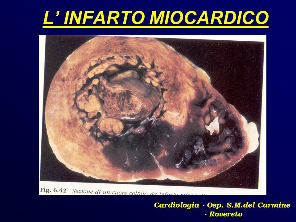 L INFARTO MIOCARDICO Cardiologia - Osp. S.M.del Carmine - Rovereto
