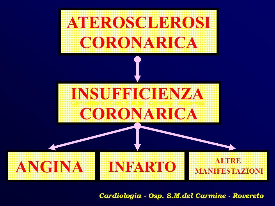 INSUFFICIENZA CORONARICA INFARTO ALTRE MANIFESTAZIONI ATEROSCLEROSI CORONARICA ANGINA Cardiologia - Osp. S.M.del Carmine - Rovereto
