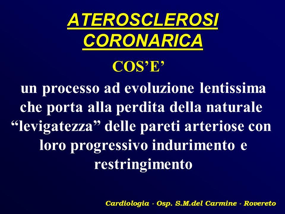 ATEROSCLEROSI CORONARICA Cardiologia - Osp. S.M.del Carmine - Rovereto COSE un processo ad evoluzione lentissima che porta alla perdita della naturale