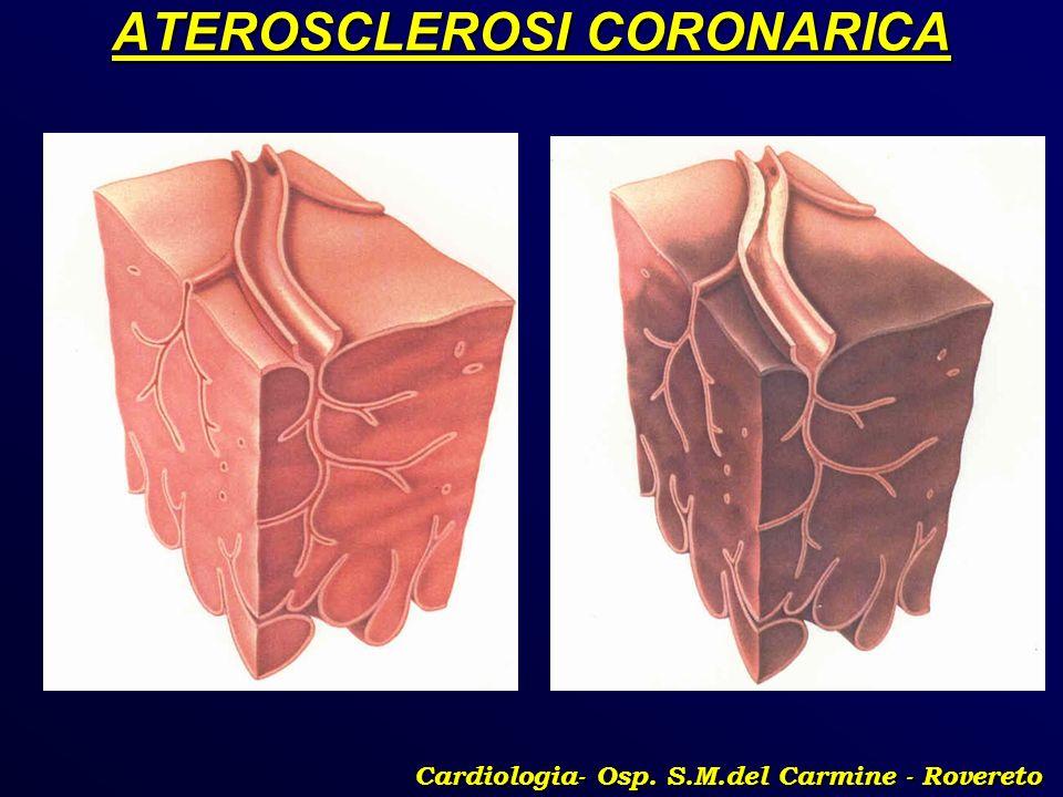 ATEROSCLEROSI CORONARICA Cardiologia- Osp. S.M.del Carmine - Rovereto
